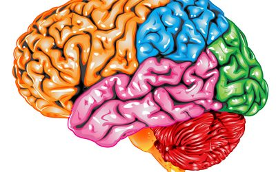 How does EFT tapping rewire your brain?